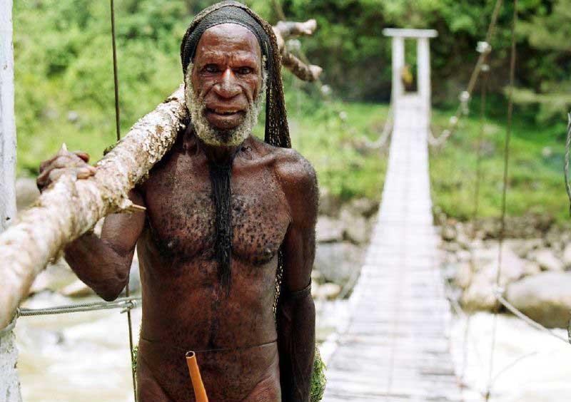 peuple dani papouasie